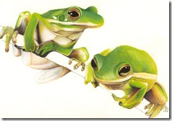 Frogs__Color__by_frogmaster9